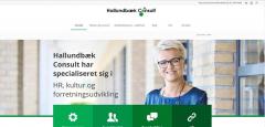 hallundbaekconsult.dk